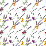 Lavender flowers, butterflies. Watercolor seamless pattern. Lavender flowers and butterflies. Watercolor seamless pattern Royalty Free Stock Images