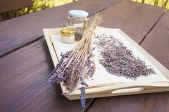 Lavender flowers dried at home. A useful, calming cosmetics ingredient, used to make face or hand creams and beverages royalty free stock photography