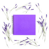Lavender flowers empty photo album book cover Floral frame Flat. Lavender flowers and empty photo album book cover. Floral frame from dried plants. Flat lay royalty free stock photos