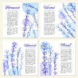 Lavender flowers hand drawn doodle vector sketch isolated on white, Set of 4 eco square cards, banners, designed frame Royalty Free Stock Images