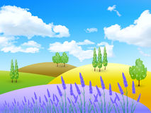 Lavender Flowers Landscapes Stock Photography