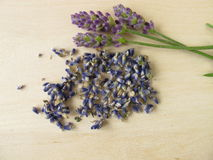 Lavender flowers, Lavandulae flos Stock Photo