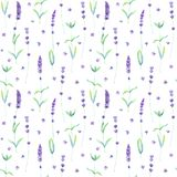 Lavender flowers, leaves and branches watercolor seamless pattern on white background. Watercolour hand drawn botanical texture. Print for textile, wallpaper vector illustration