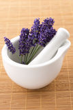 Lavender flowers in a mortar Stock Images