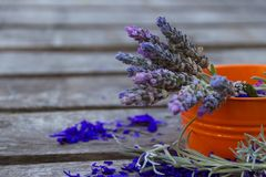 Lavender flowers on rustic wooden background