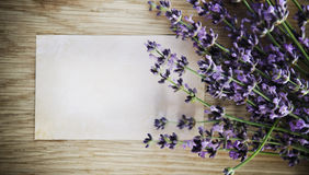 Lavender flowers over wooden background Royalty Free Stock Images