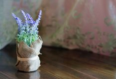 Lavender Flowers In pot royalty free stock images