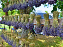 Lavender flowers, Provence, France Stock Photo