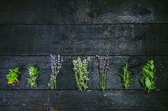 Lavender flowers, rosemary, mint, thyme, melissa with old scissors on a black wooden table. Burnt wood. Spa and cosmetic or cookin Stock Photos