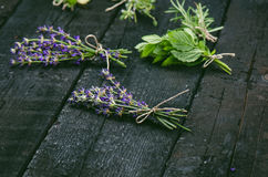Lavender flowers, rosemary, mint, thyme, melissa with old scissors on a black wooden table. Burnt wood. Spa and cosmetic or cookin. Lavender flowers, rosemary stock images