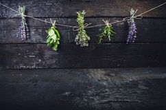 Lavender flowers, rosemary, mint, thyme, melissa with old scissors on a black wooden table. Burnt wood. Spa and cosmetic or cookin Royalty Free Stock Image