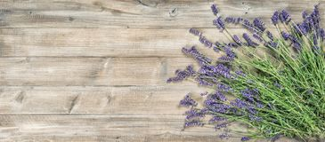 Lavender flowers rustic wooden background Vintage picture royalty free stock photos