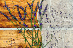 Lavender. Flowers and seeds contrasted by wood paneling background Royalty Free Stock Photography