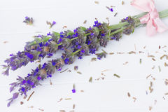 Lavender flowers spa Royalty Free Stock Photo