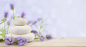 Lavender flowers and stones on wood over abstract lilac background Stock Images
