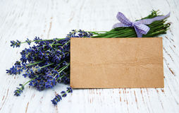 Lavender flowers with tag Stock Photo
