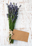 Lavender flowers with tag Royalty Free Stock Images