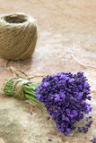 Lavender flowers tied with rustic twine Royalty Free Stock Image