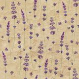 Lavender flowers watercolor seamless pattern on yellow brown color old paper grunge background. Watercolour hand drawn botanical texture illustration. Print royalty free illustration
