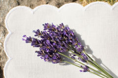 Lavender flowers. On white napkin Stock Photo