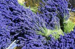 Lavender Flowers in a Wicker Basket. Lavender flower bundle in a wooden wicker basket Stock Photography