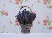 Lavender flowers in a wicker basket Stock Images