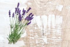 Lavender flowers wooden background Shabby chic Royalty Free Stock Image