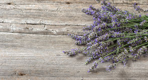 Lavender flowers on wooden background. Vintage still life royalty free stock image