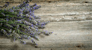Lavender flowers on wooden background. Vintage style toned royalty free stock photography
