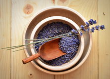 Lavender flowers. In the wooden bowl Royalty Free Stock Images