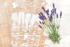 Lavender flowers wooden texture Vintage background. Lavender flowers on wooden texture. Vintage style background Stock Image