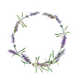Lavender flowers wreath. Watercolor. Round floral border Royalty Free Stock Photos