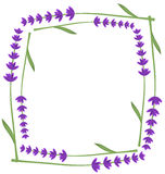 Lavender frame Stock Photography