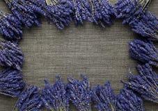 Lavender frame Stock Image