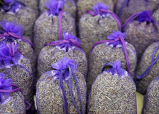 Lavender in France Royalty Free Stock Photography