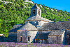 Lavender in front of the abbaye de Senanque in Provence Stock Photography