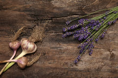 Lavender and garlic on rustic background Stock Photography