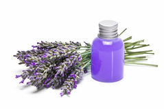 Lavender gel over white background. Stock Photos