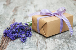 Lavender and gift box Stock Images