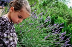 Lavender Girl Royalty Free Stock Photography