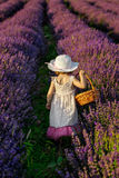 Lavender girl Royalty Free Stock Image