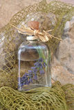 Lavender in glass jar Royalty Free Stock Images