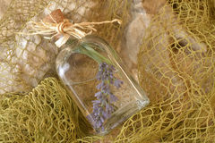 Lavender in glass jar Royalty Free Stock Photos