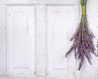 Lavender hanging from an old door Royalty Free Stock Photo