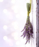 Lavender hanging from an old door Royalty Free Stock Photos
