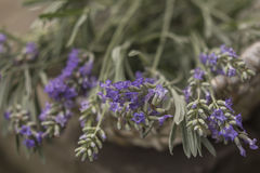 Lavender. Harvest clouse up Outdoor Royalty Free Stock Images