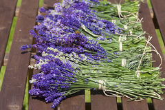 Lavender after harvest on the table Royalty Free Stock Photo