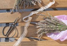 Lavender harvesting Lavender bunch on wooden table with sunlight Aromatherapy Traditional medicine stock photography