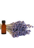 Lavender Healing Herb. Lavender herb with an aromatherapy essential oil glass bottle over white background Royalty Free Stock Images