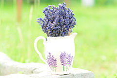 Lavender. The health benefits of lavender essential oil include its ability to eliminate nervous tension, relieve pain, disinfect the scalp and skin and treat royalty free stock image